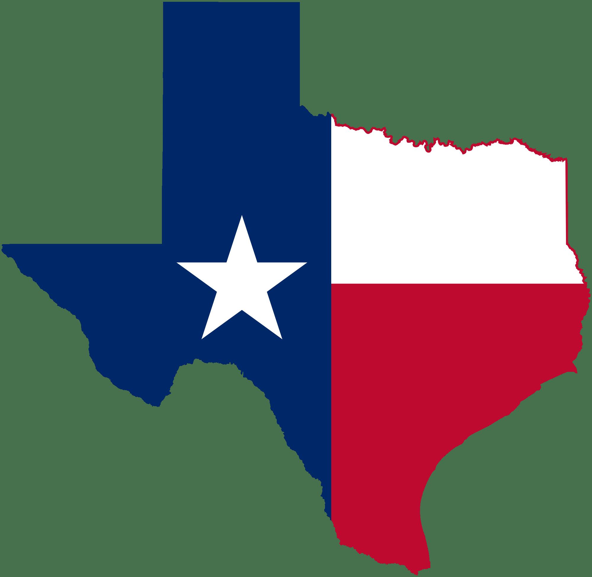 Texas tax delinquent properties