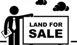 back taxes land for sale