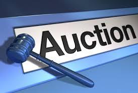 tax sale properties auction